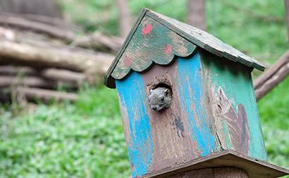 中古戸建購入時に住宅ローン控除を活用する2つの方法